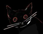 Gato, negro, Julio, retrato