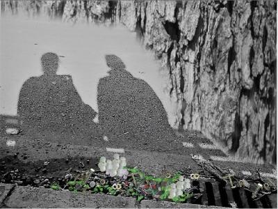 Sombras; parque; banco: mujeres