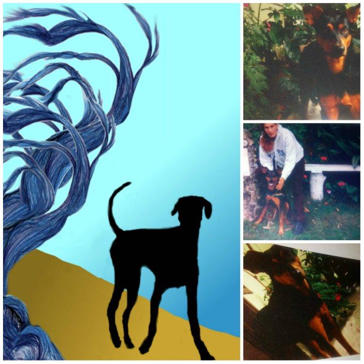 Conjunto de fotos de Mickey. Un perrito negro (mezclado con doberman). A la izquierda un dibujo de su imagen sobre un fondo azul, un trozo de árbol y algo de tierra ocre.