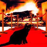 Mitos y leyendas: Una historia sobre el rey de los gatos y su fiel súbdita, conocida en la actualidad como La loca de los gatos
