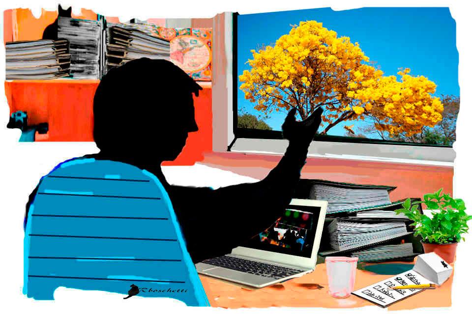 El escritorio de Saturnino Segundo con su portátil, unos archivadores, notas, un vaso con café y una planta. Saturnino Segundo, sentado en la silla de su escritorio saluda a una abeja que está en la ventana
