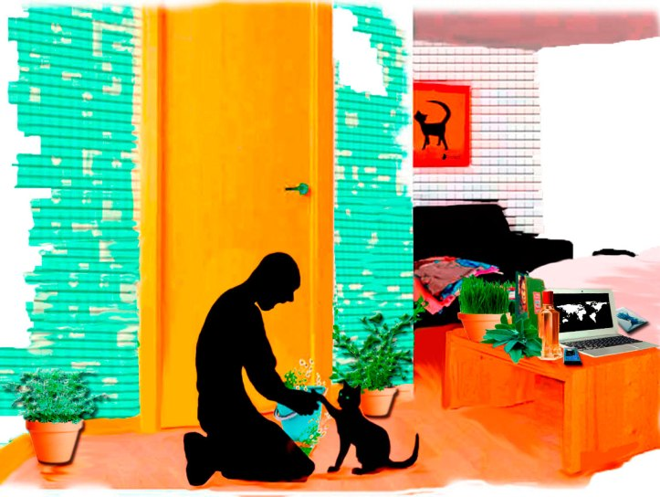 Habitación del hostal ordenada, el libro Malas decisiones sobre la cama. Ducha antipulga con manzanilla al gato negro (Bram)