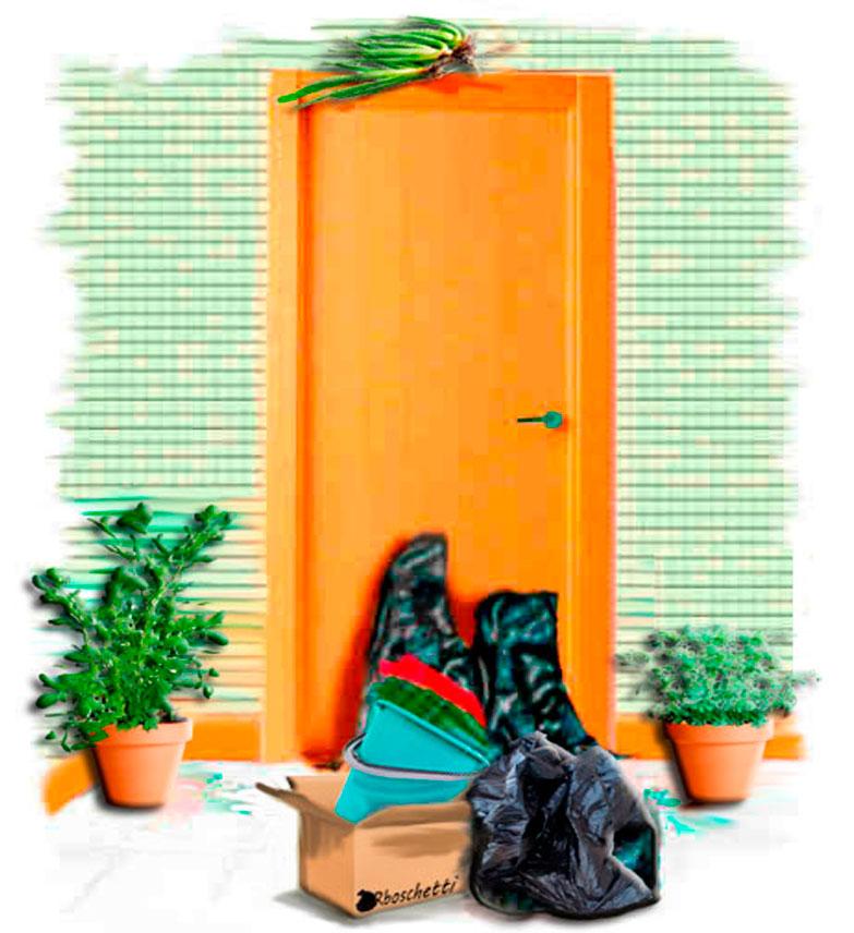 La planta de ruda macho a la izquierda de la puerta y la hembra a la derecha. El aloe vera en medio de ellas cuelga del dintel de la puerta. Habitación del hostal. Basura apilada en la puerta.
