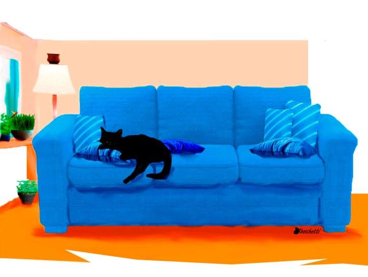 En el sofá del Piso de Daniel, duerme el gato negro (Bram)