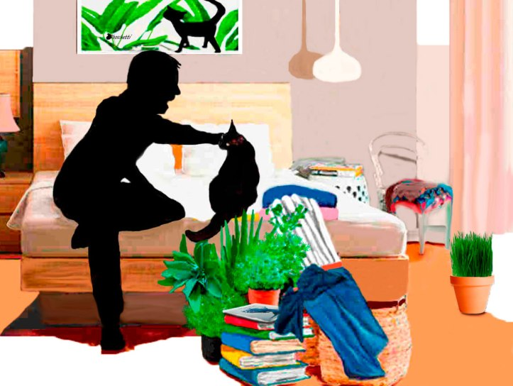 Vivir con un gato. Habitación del hostal ordenada, libro Malas decisiones sobre otros libros