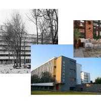 ¿Qué diferencia hay entre constructivismo, Bauhaus y estilo industrial? dentro del mundo del arte