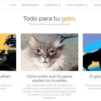 Colaboración para Todoparatugato: ¿Por qué los gatos sueltan tantos pelos? Relato corto